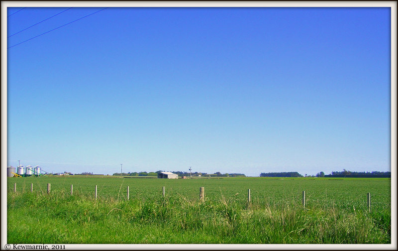 Killinchy - Canterbury Plains, New Zealand