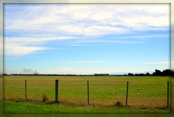 Farmland, Southbridge