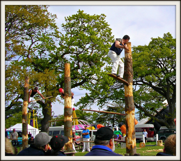 Woodchopping Competition