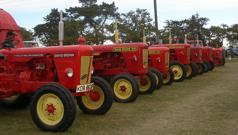 Red Tractors All In A Row