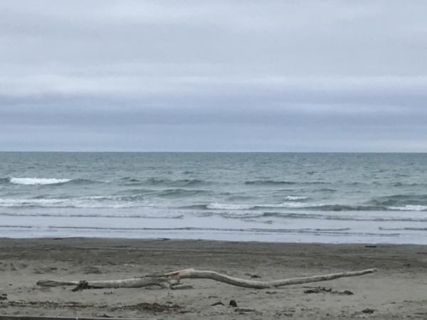 New Brighton Beach, Christchurch NZ