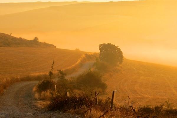Camino de Santiago, near Hornillos