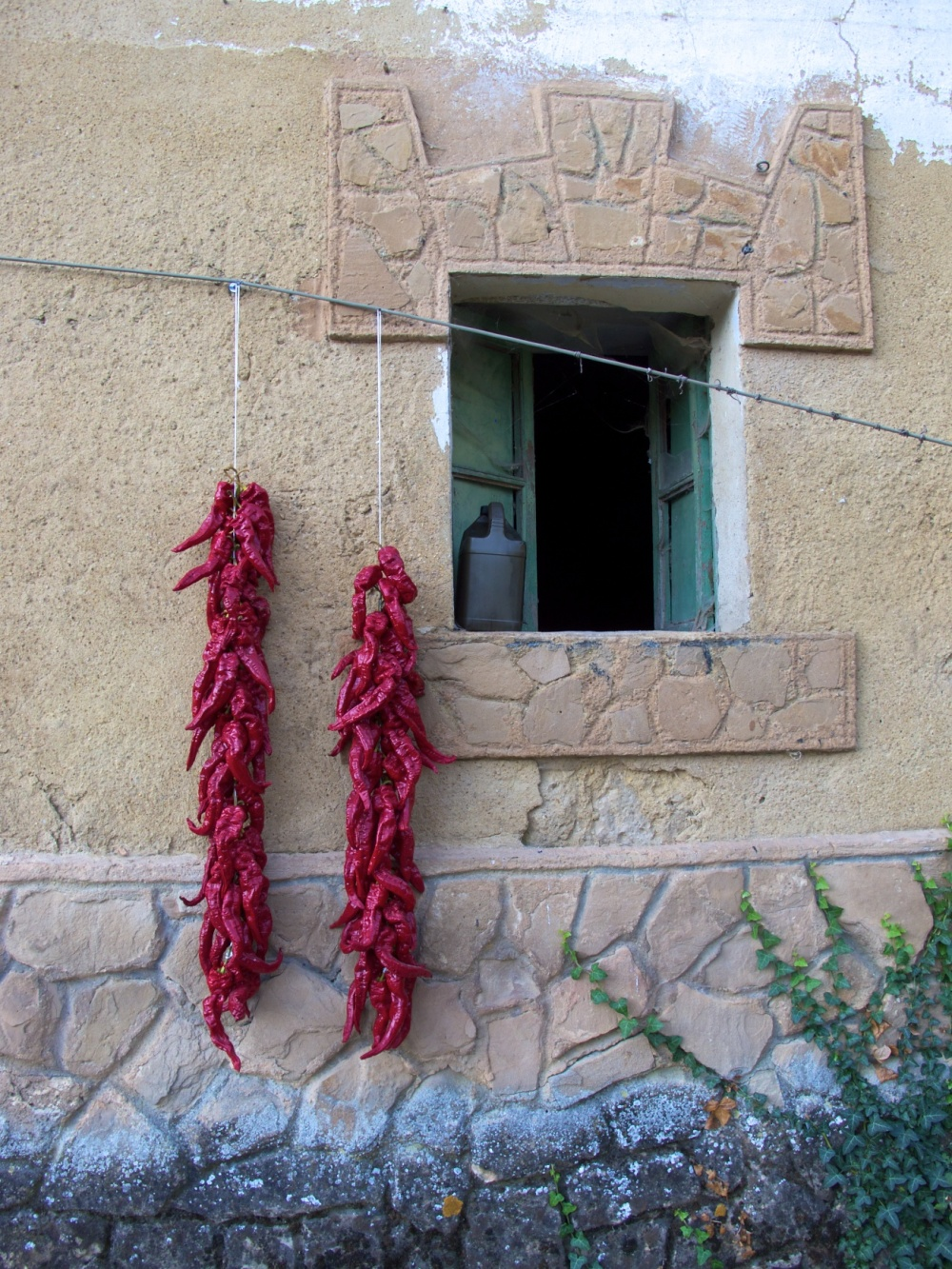 Hot peppers in Irache, Spain  Oct2011