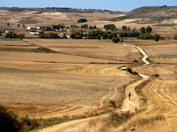 Camino to Hornillos, Spain