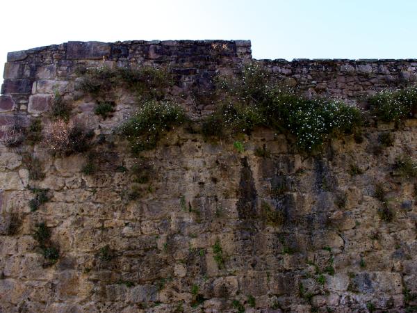 Stone wall at the Citadella, St. Jean