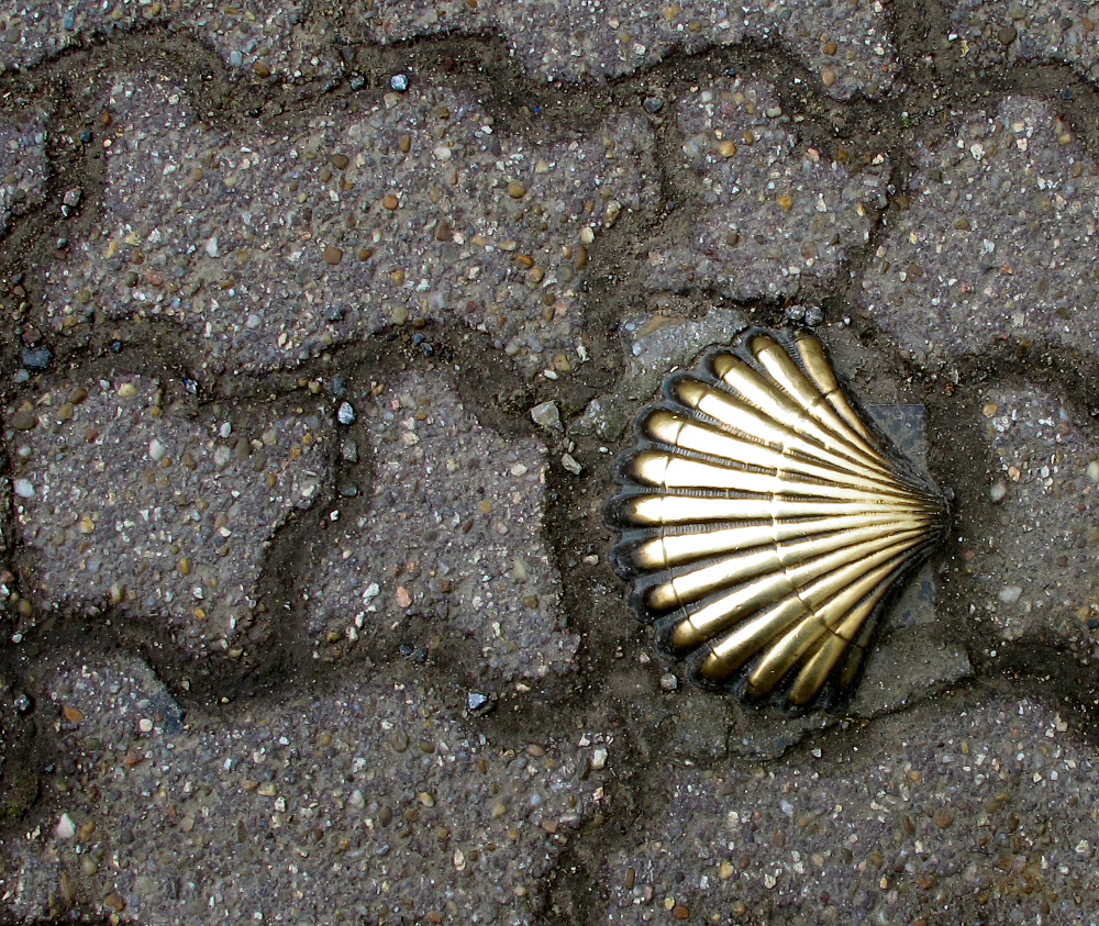 Scallop shell on the Camino, Spain