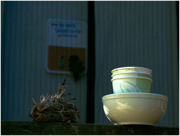 Sun shining on paper cups and bowl