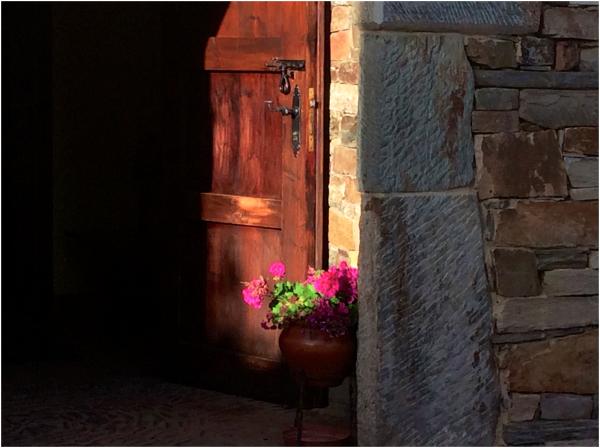 A corner of sunlight
