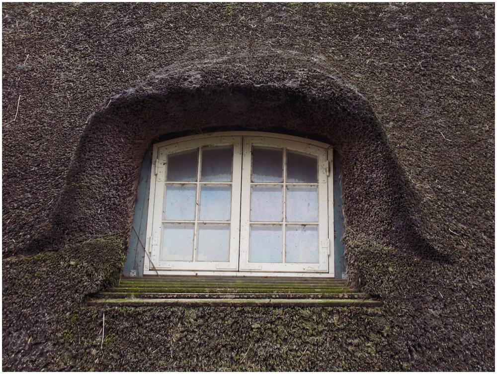 Eyebrow window