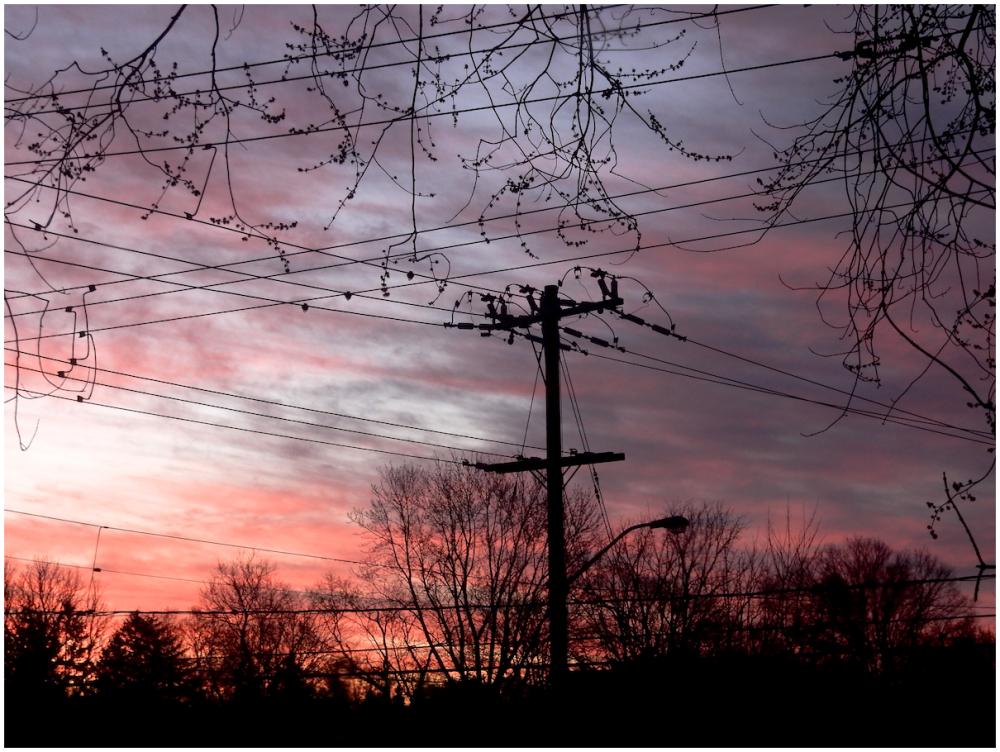 Crossed wires at sunrise