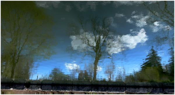 Watery reflection