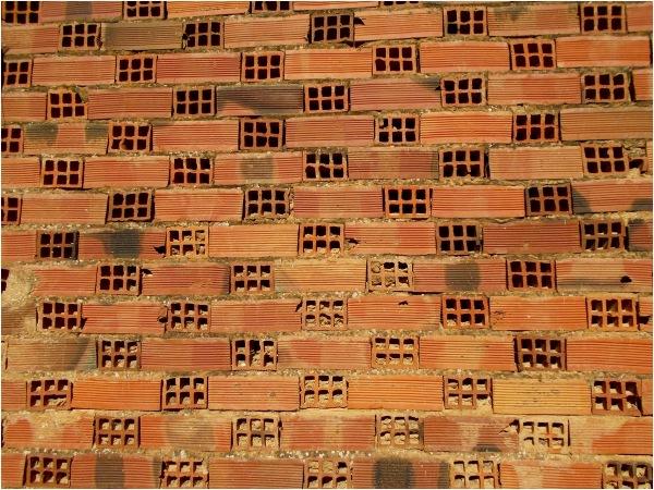 Bricks in a wall