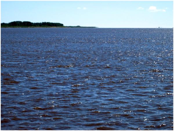 James Bay
