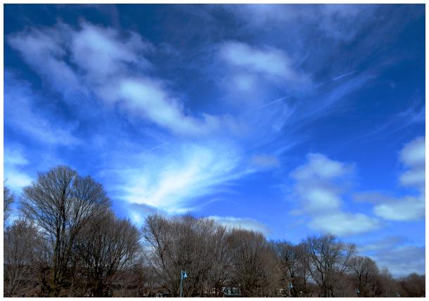 Spring clouds take flight