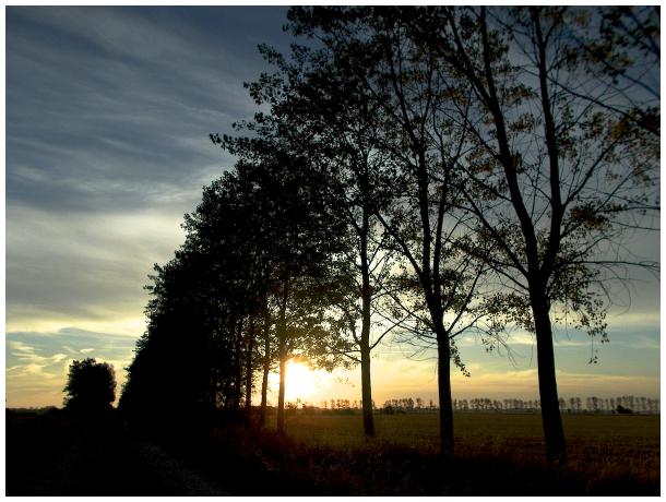 Sunrise on the Camino Frances