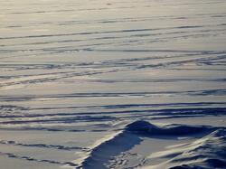Winter Lakescape
