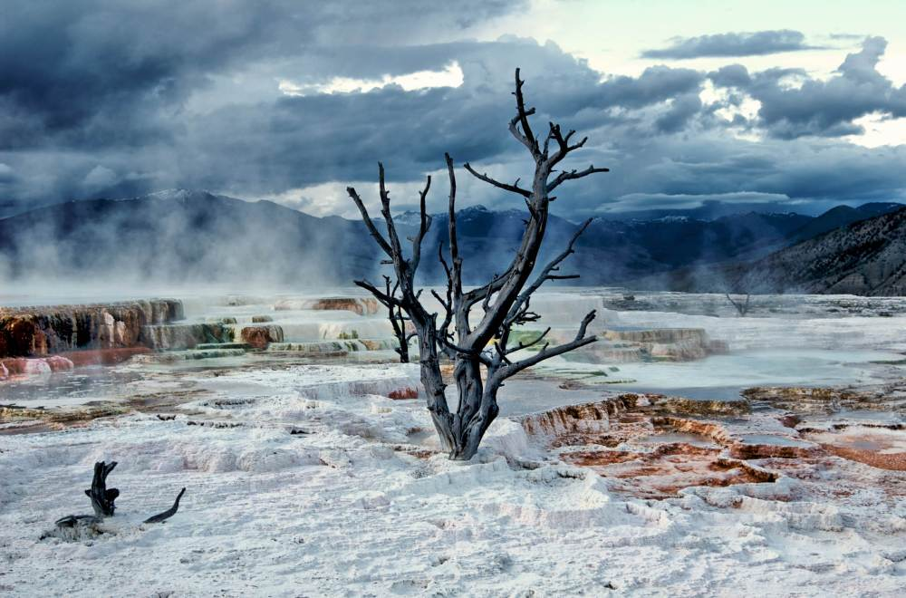 Mammoth Hot Spring, Yellowstone National Park, Wy