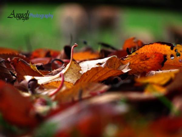 Fall times