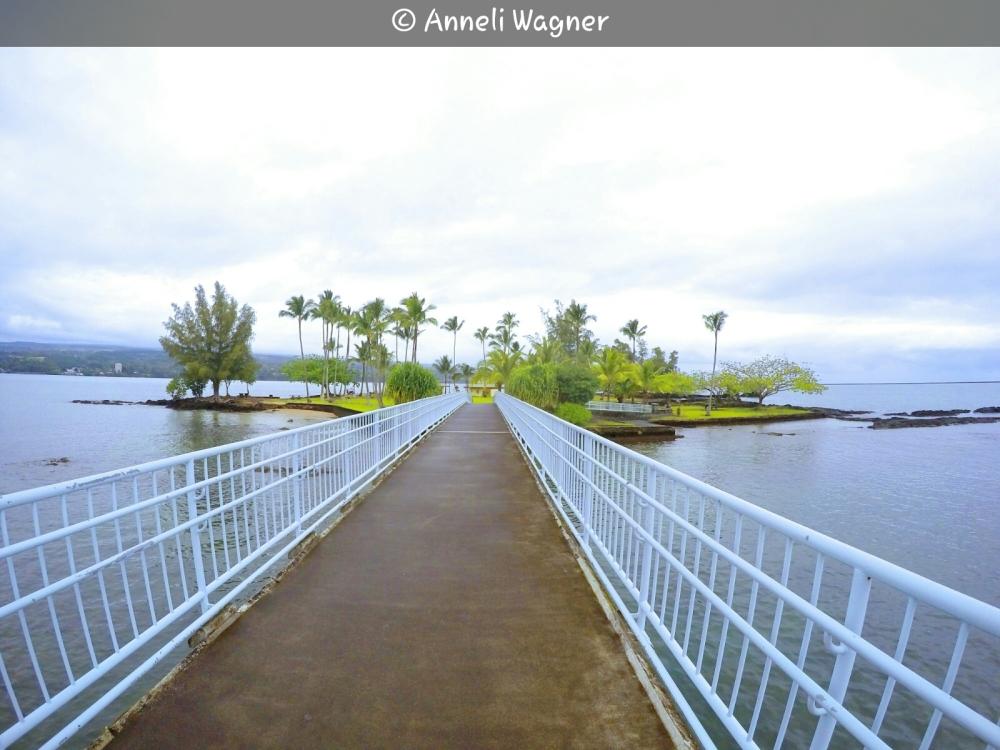 Way to Coconut Island