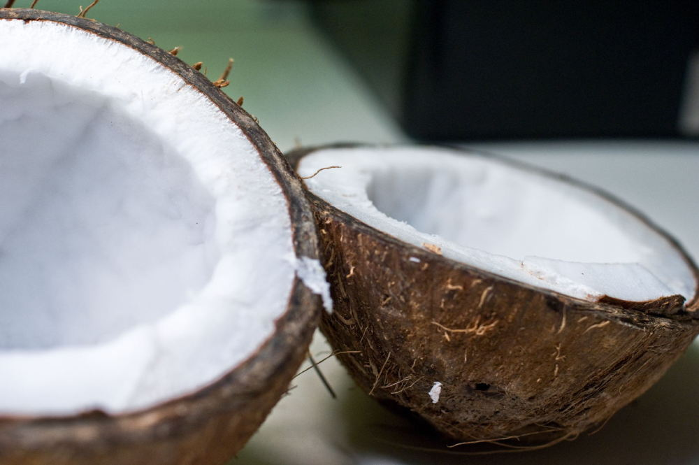 coconut shots for upcoming book