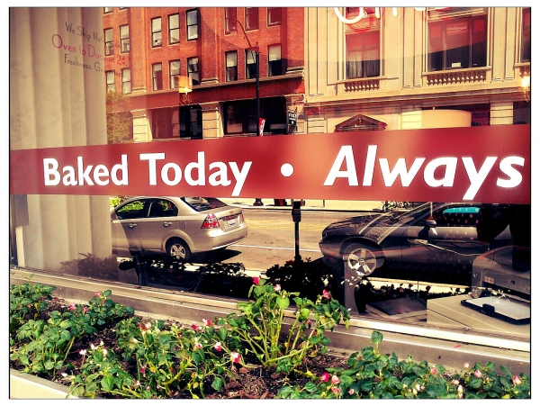 window sign of cubpcake business