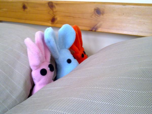 Bunnies in Bed