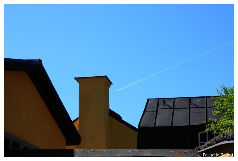 Sur les toits suédois