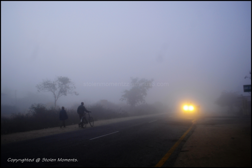Early walk in the mist