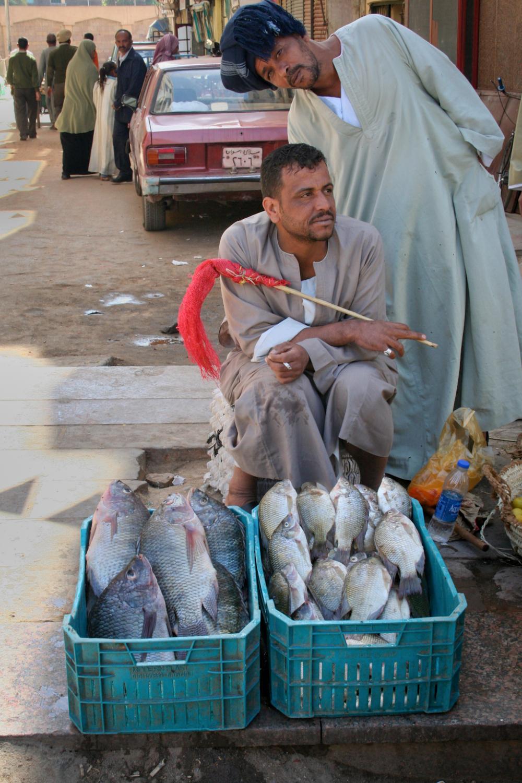 Men selling fish in the spice market Aswan Egypt