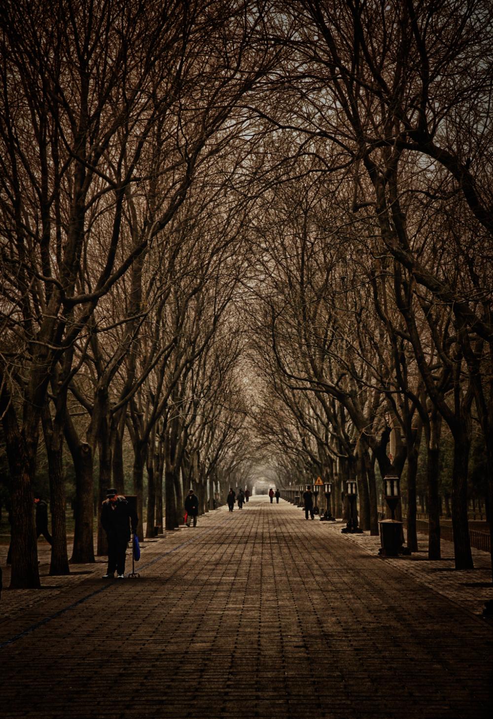 Near the Temple of Heaven in Beijing