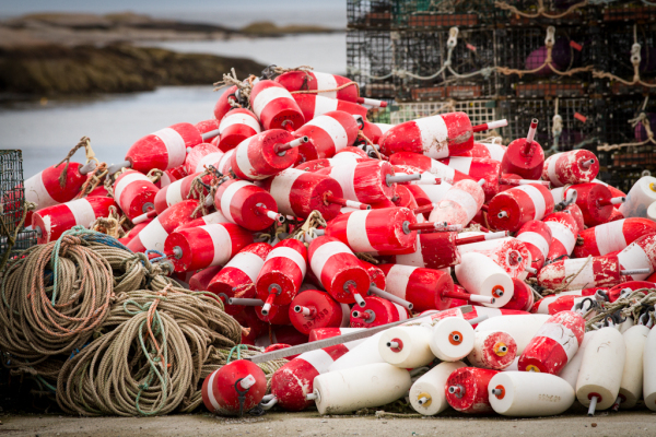 lobster gear, Corea Maine