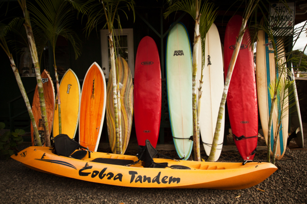 Surf boards