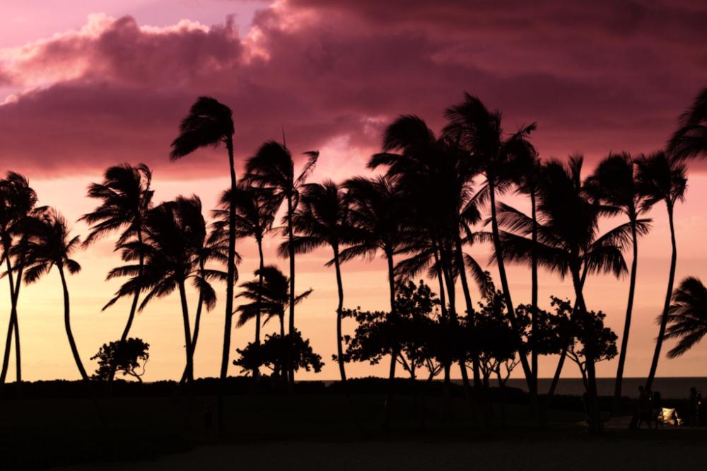 Evening on Waikoloa Beach, Oahu