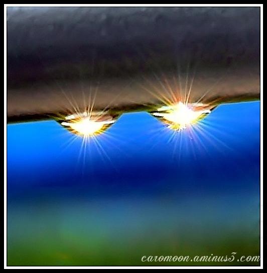 raindrops and sunlight
