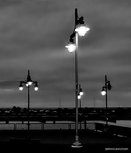 a quiet evening at the marina