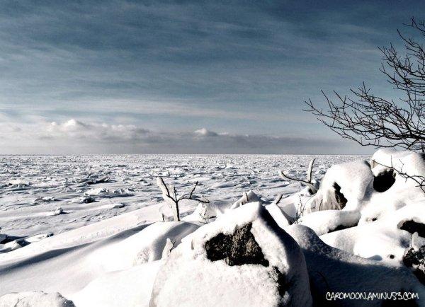 under winter's spell