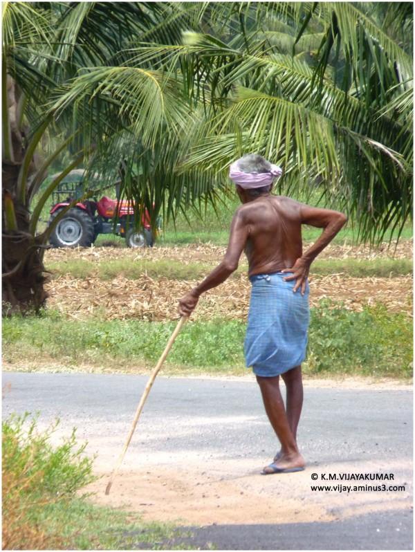 Thiruchengode farmer