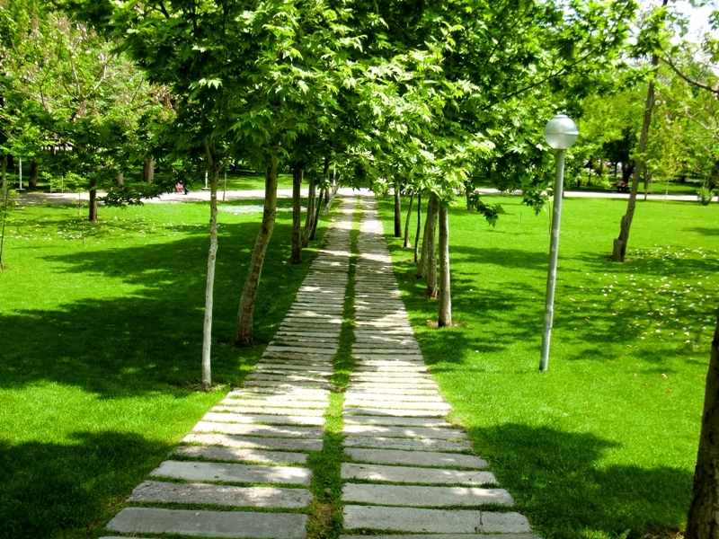 this path leads to ..............!!!!!!!!!!!!!!