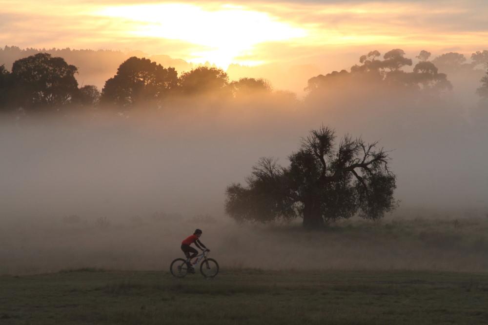 Mountain bike rider in early morning fog.