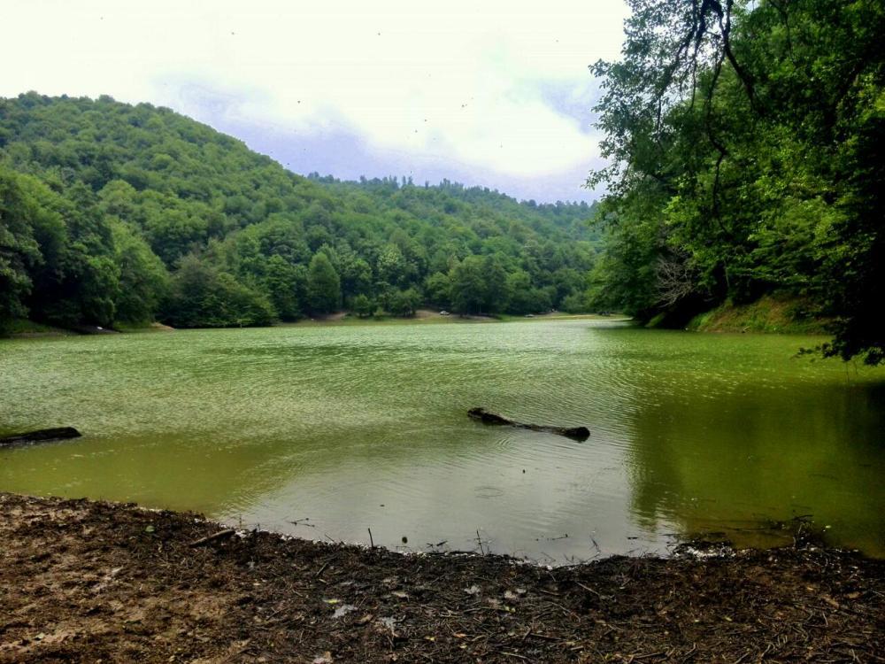 دریاچه ی میانشه