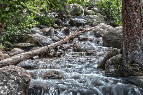 Idaho Springs Creek