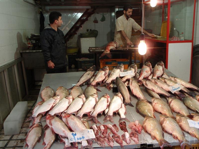 Fish shop- فروشگاه ماهی