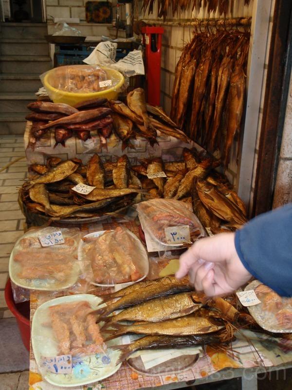 Fish shop2- فروشگاه ماهی