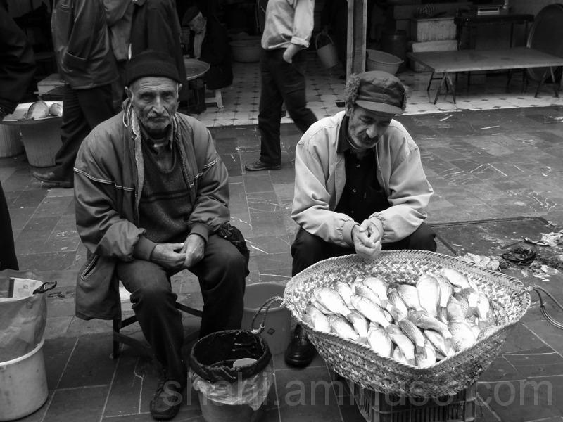 fishsleas
