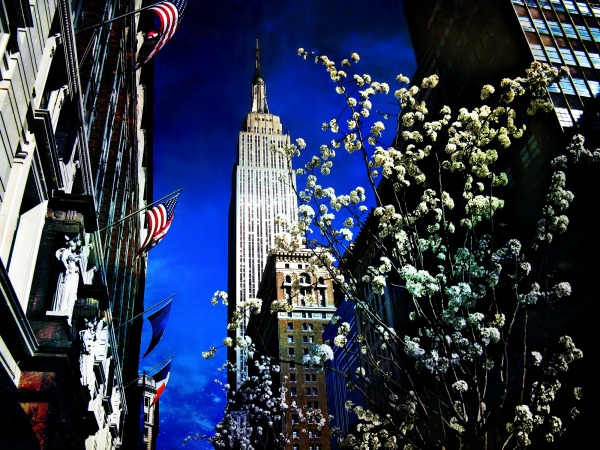 Empire State Spring