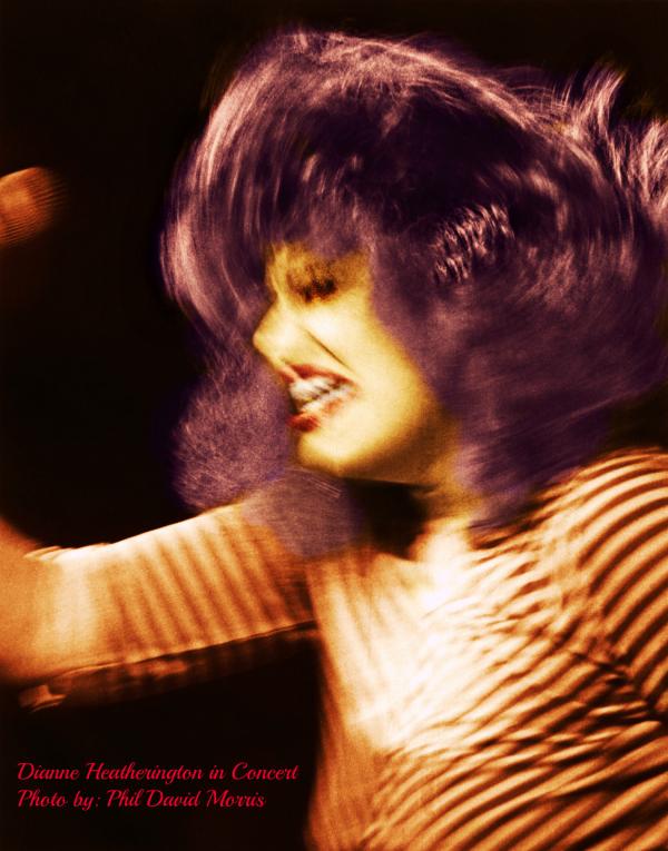 Dianne Heatherington Photosite