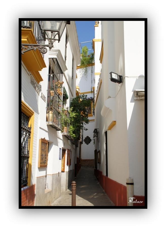 Quartier de Santa Cruz à Séville