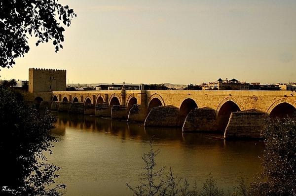 Le vieux pont de Cordoue