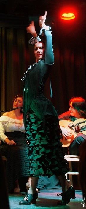 Passion flamenco