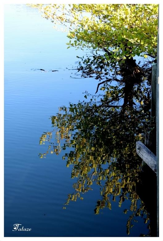 Miroir de l'eau